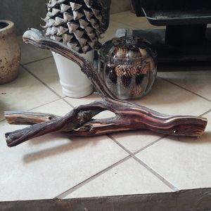 Beautiful Manzanita Branch Trunk Jewelry or lizard